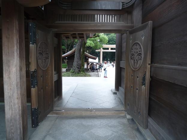 帰り道(明治神宮 南神門の右側通路