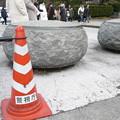 Photos: 餅のような形の置き石。