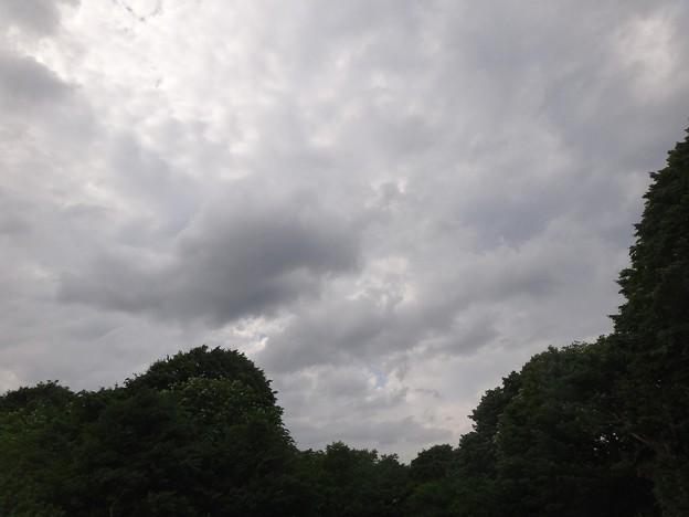 夕方には空も雲で覆われました