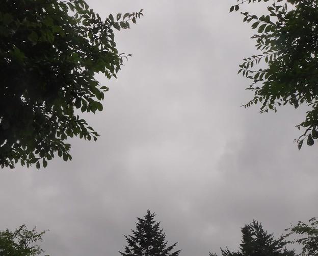 今にも雨が降りそう