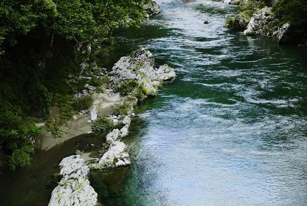 Photos: 清涼を運ぶ面河川の流れ