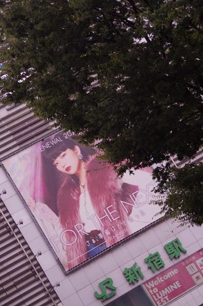 SHINJYUKU TOKYO LUMINE BULL