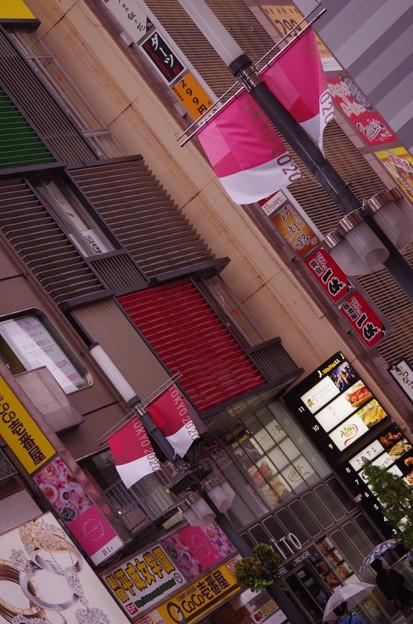 歌舞伎町 新宿 とうきょう