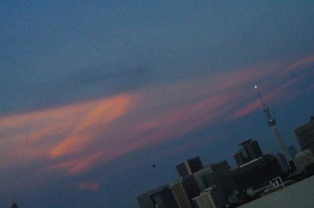 浅草の方角「あたらしい、タワー」