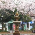 Photos: 周辺