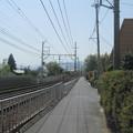 Photos: 松ノ馬場