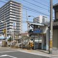 Photos: 島ノ関