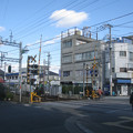 Photos: 服部
