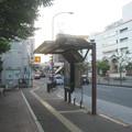 Photos: 宮跡庭園