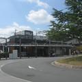 Photos: 菖蒲池