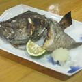 Photos: くえ