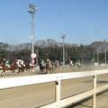 Photos: 走る馬