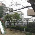 Photos: 隣接