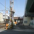 Photos: 芦原町