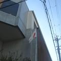 Photos: 日の丸