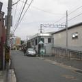 Photos: 真菅