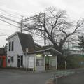 Photos: 松塚