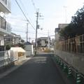 Photos: 松尾谷下二番