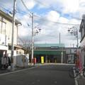 Photos: 桜井