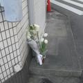 Photos: 供花