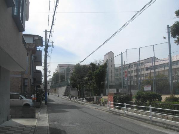 Photos: 遠目に