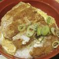 Photos: 自称カツ丼