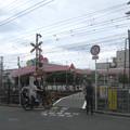 Photos: 百舌鳥八幡3号