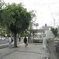 Photos: 新金岡