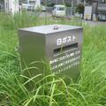Photos: 芦屋のアレ