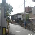 Photos: 道の脇に