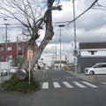 Photos: 前栽駅前