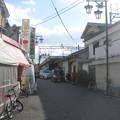 Photos: 田原本
