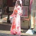 Photos: 呉服屋のアレ