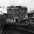 Photos: 色消し大魔王#044