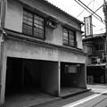 Photos: 色消し大魔王#059