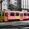 【鹿児島市電】9500形 9509号車(ナンワエナジーラッピング車両)
