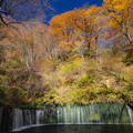 Photos: 秋の白糸の滝