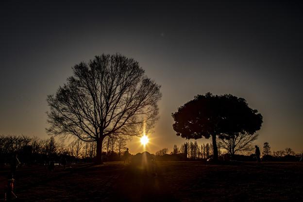 落陽の公園