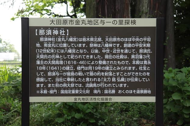 栃木県、那須与一、那須神社IMG_0322