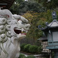 Photos: 藤沢市 天嶽院_1529