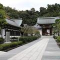 Photos: 藤沢市 天嶽院_1522