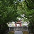 Photos: 藤沢市 天嶽院_1518