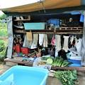 菜園・収穫を撮影する小屋の近景