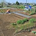 菜園あの日