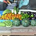 Photos: 8月17日の収穫