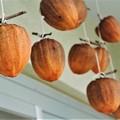 Photos: 今年もやっぱり干し柿作るよね! (3)