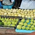 Photos: 11月6日・ハヤトウリ収穫