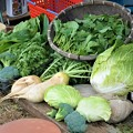 Photos: 11月6日・収穫も徐々に冬野菜へと・・.