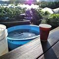 Photos: 氷の張った菜園でコーヒを・・