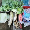 Photos: 2020.12.26.菜園・収穫